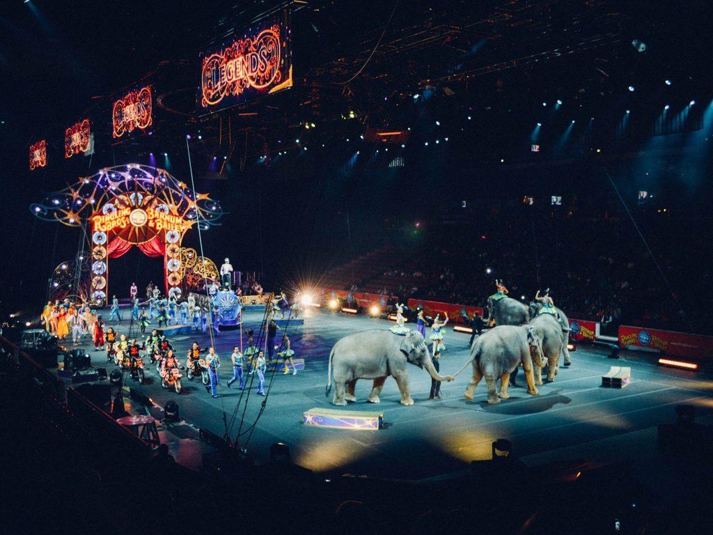 На изчезване ли са цирковете?